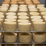 cheese factory food dairy
